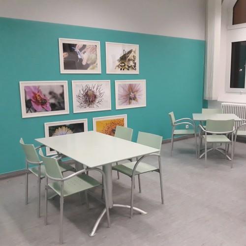 lebensraum_cafeteria
